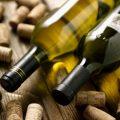 vino-rosso-doc-piceno